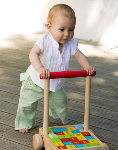 Toys For 12 18 Months : Your toddler month by months walking and
