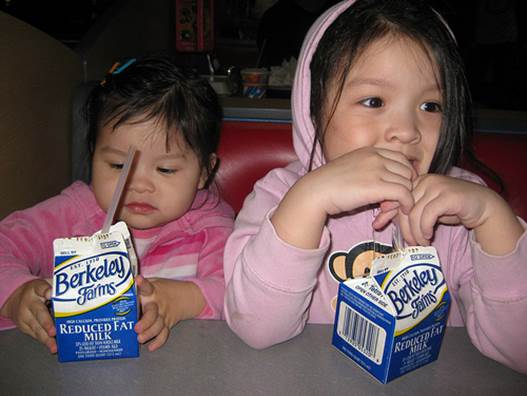 Many children do not like to drink milk, but thanks to God, they rarely refuse dairy foods.