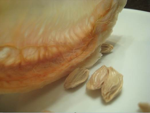 When you eat pomelo, choose plump seeds and put in a clean container to extract pectin
