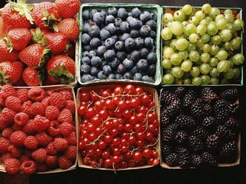 Fruits that belong to berry help protect our body by nutrient anthocyan that prevents substance creating cancer.