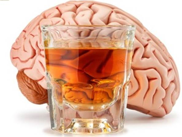 Alcohol kills your brain cells