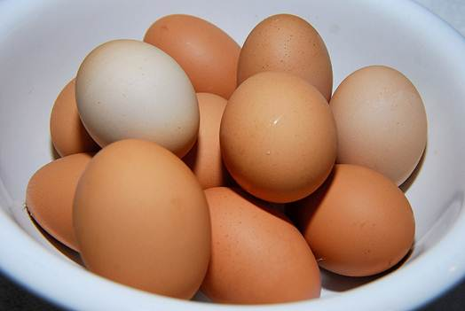 Description: Chicken egg is useful for operating function of brain.