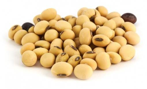 Description: Soy bean is a natural and beneficial way to reduce the unpleasant symptoms of menopause.