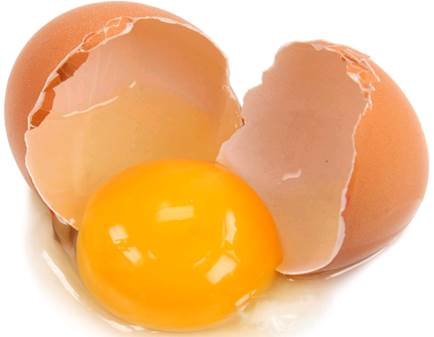 Mothers can let newborn babies that are under 6 months old to eat egg white.