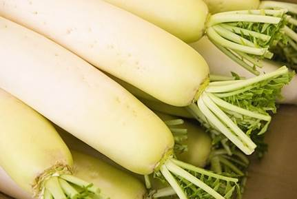 White radish is food that is easy to use.