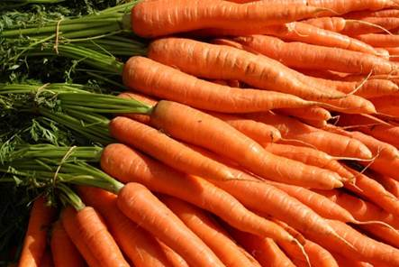 Carrot is effective for curing constipation.