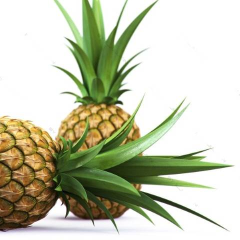 In the first 3 months of pregnancy, women shouldn't eat pineapple.