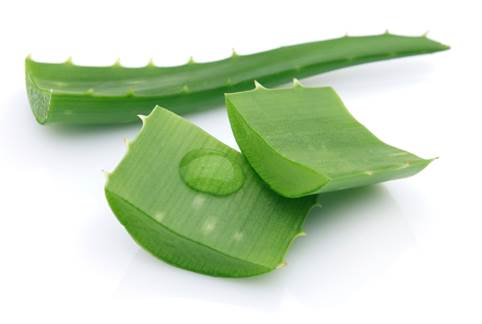 Aloe can cause pelvic hemorrhage.