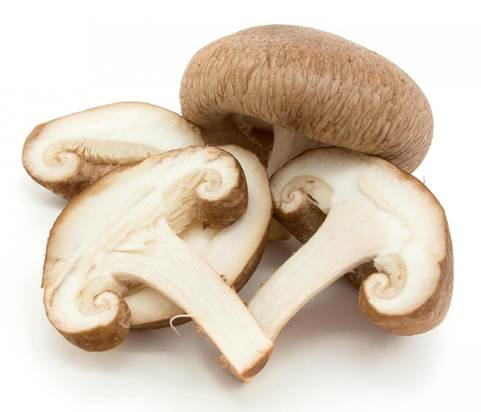 Mushrooms are delicious though, pregnant women should be aware of them.