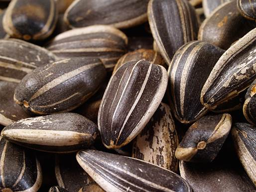 Get a dose from: Sunflower seeds, almonds and spinach.