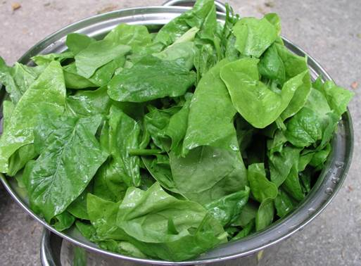 Make sure you keep your spinach refrigerated to preserve its high nutrient content.