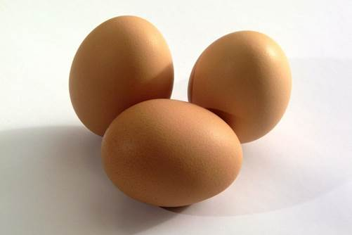 Egg is the source that provides riboflavin and protein.