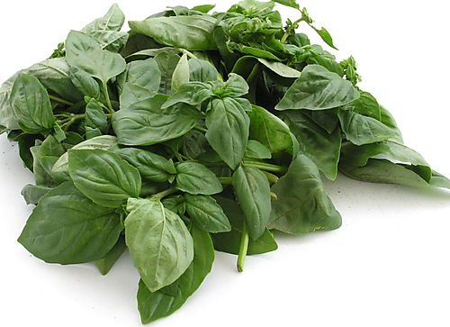 • 30g shredded fresh basil