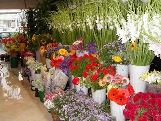 Description: Flowers shop