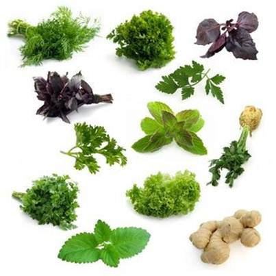 Description: Herbs, to add flavor