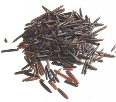 Description: Wild rice