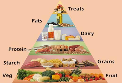 Description: eating plan