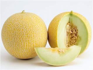 Description: Melon