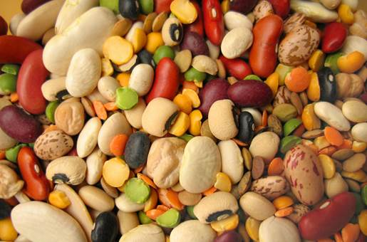 Beans are rich-zinc foods that are very good for pregnant women.
