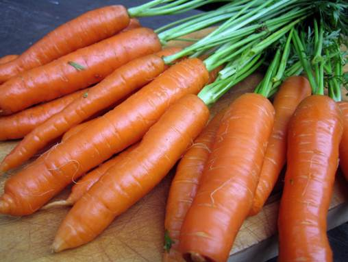 Carrots contain vitamin A and B.