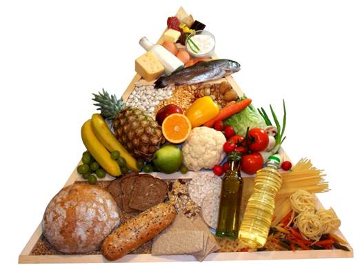You should create a sensible regimen that provides calcium, other nutrients and vegetable.
