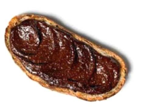 Skinny Salted Choc Bread