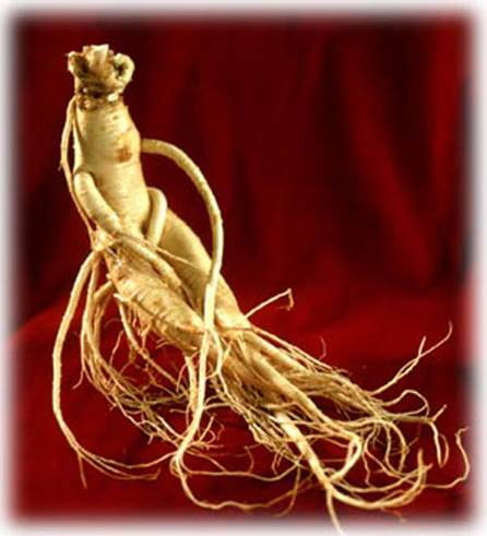Until now, there isn't clear evidence about ginseng's effect.