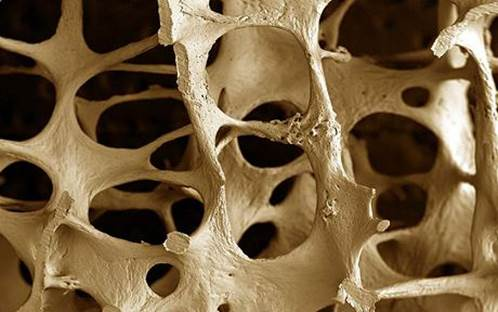 If a great amount of calcium is disabled, it'll lead to calcium deficiency and osteoporosis.