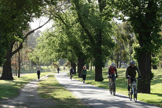 It's been proved that walking in green space is good for releasing stress.