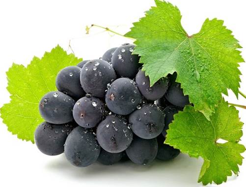 Fresh grapes can make density of wine reduce and help deal with nauseating.