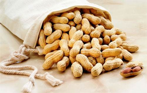 Eating peanuts in pregnancy can increase the risk of allergy for babies.