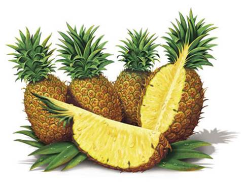 In the first 3 months of pregnancy, pregnant women shouldn't eat and drink fresh pineapple or pineapple juice.