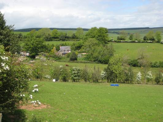 Description: I sense an appreciation of a gentle pace of life in rural south Shropshire