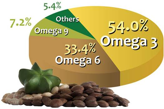 Description: Here are amounts of omega-9, omega-6 and omega-3 fatty acids