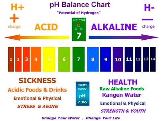Description: PH balance chart