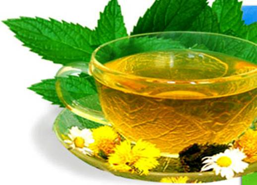 Description: Green tea reduces your thirst during long running and walking exercises.