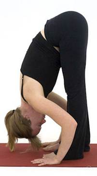 Description: Uttanasana