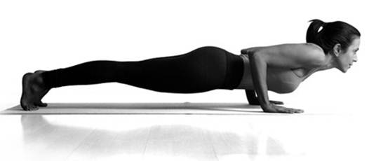 Description: Chaturanga Dandasana