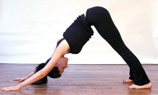 Description: Adho Mukha Svanasana