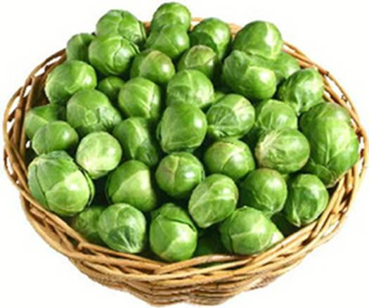 Description: Sprouts