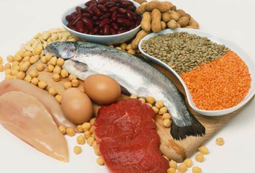 Description: Have protein in your meal