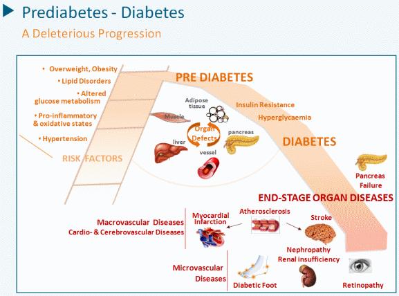 Description: Prediabetes