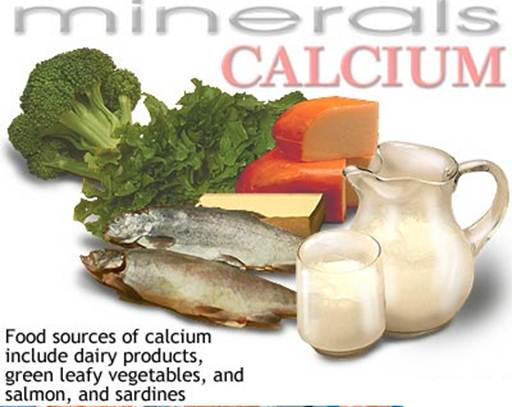 Description:  High Calcium Foods