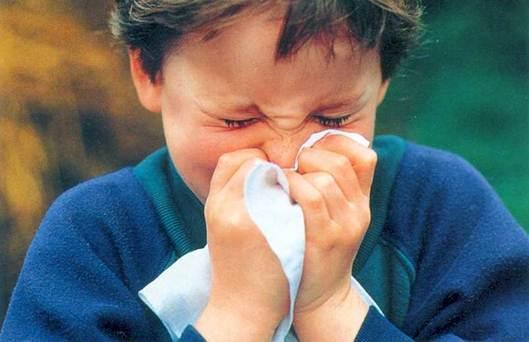 Description: flu