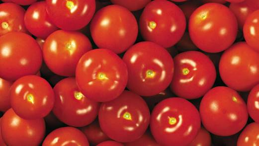 When tomatoes are cooked, they bring better effects because the high heat helps release lycopene.