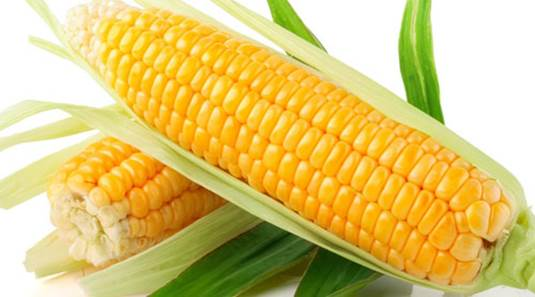 Corn is very good for health.