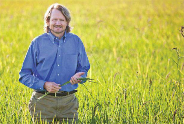 Grant Lundberg, a rice producer in Richvale, Calif, has begun extensive testing for arsenic.