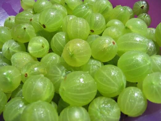 Description: Gooseberries