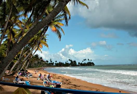 Description: Bohio Bar, Puerto Rico