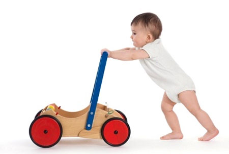 Description: There are many controversial opinions about using walker for babies.